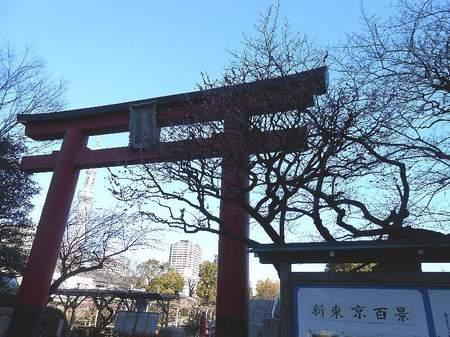 170214亀戸天神_2.jpg