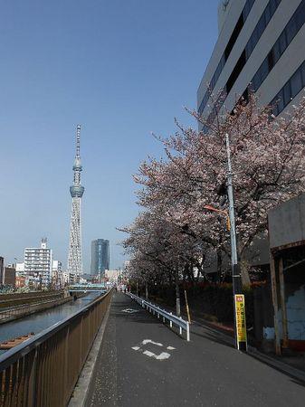 170406福神橋_1.jpg