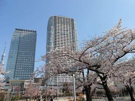 170406錦糸公園_2.jpg
