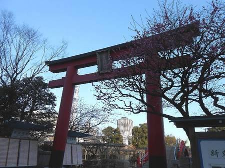 180220亀戸天神_2.jpg