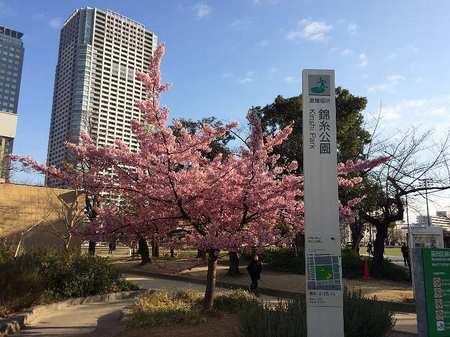 170302錦糸公園_1.jpg