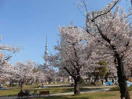 170406錦糸公園_1.jpg